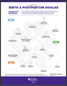 DONA International Infografik